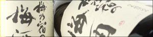 梅乃宿の梅酒 バナー