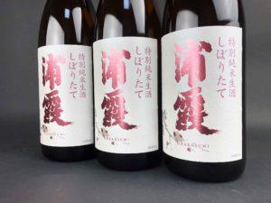 R02BY 浦霞 特別純米生酒 しぼりたて