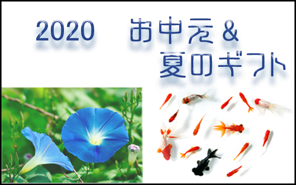 2020 お中元 サマーギフト